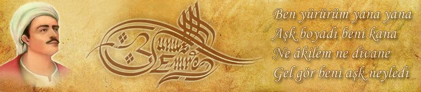 YUNUS EMRENİN EN SEVİLEN ŞİİRLERİ