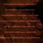 Resimli Özdemir Asaf Sözleri