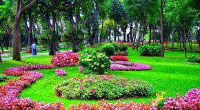 Cennet Sözleri